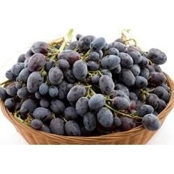 Nho đen không hạt    Các loại rau, quả, củ
